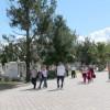 Comienza la limpieza de cementerios municipales para el día de muertos