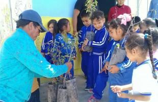 Se impulsa programa de reforestación en la delegación de bocas
