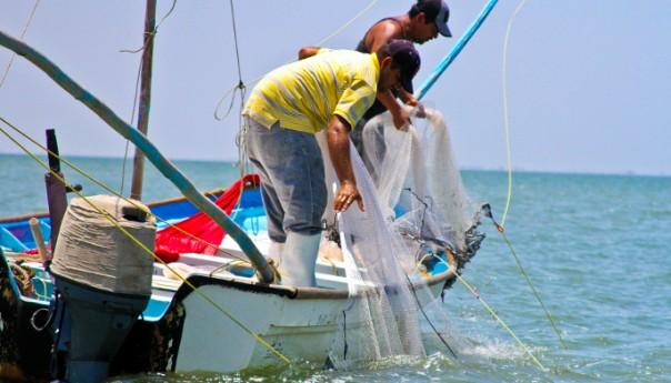 Inicia temporada de pesca de camarón en el Océano Pacífico