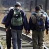 Demanda el GPPT al Gobierno Mexicano Garantizar el Respeto de los Derechos Humanos de la Caravana Migrante